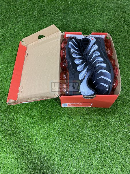 Gym Vapormax Plus (Red Shark Tooth)